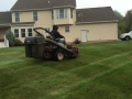 jimmy mowing